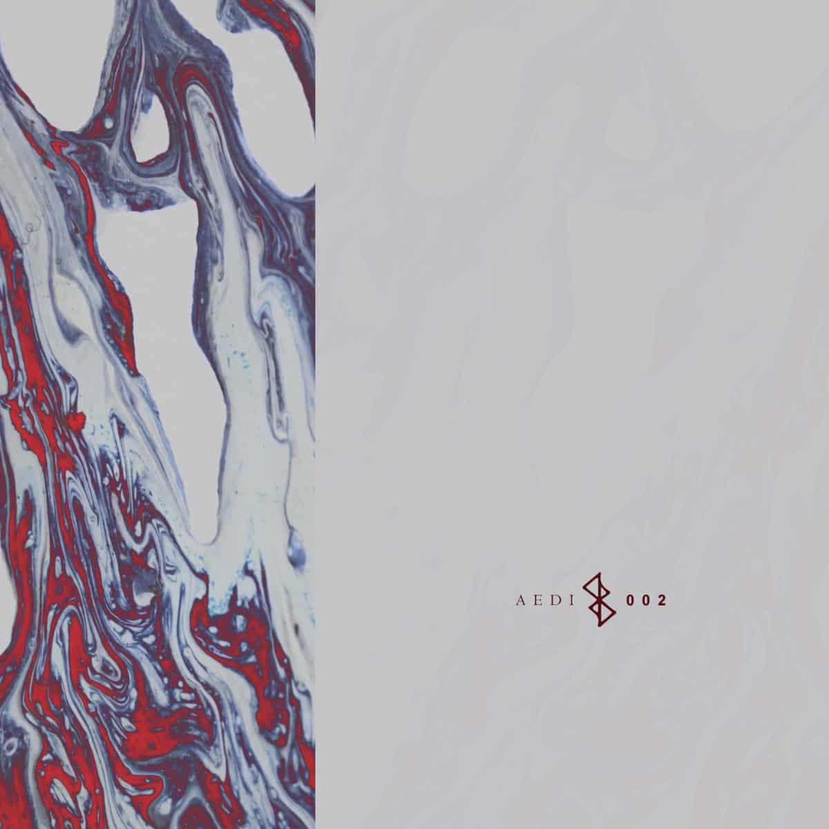 AedyRecords - Synergy Cover